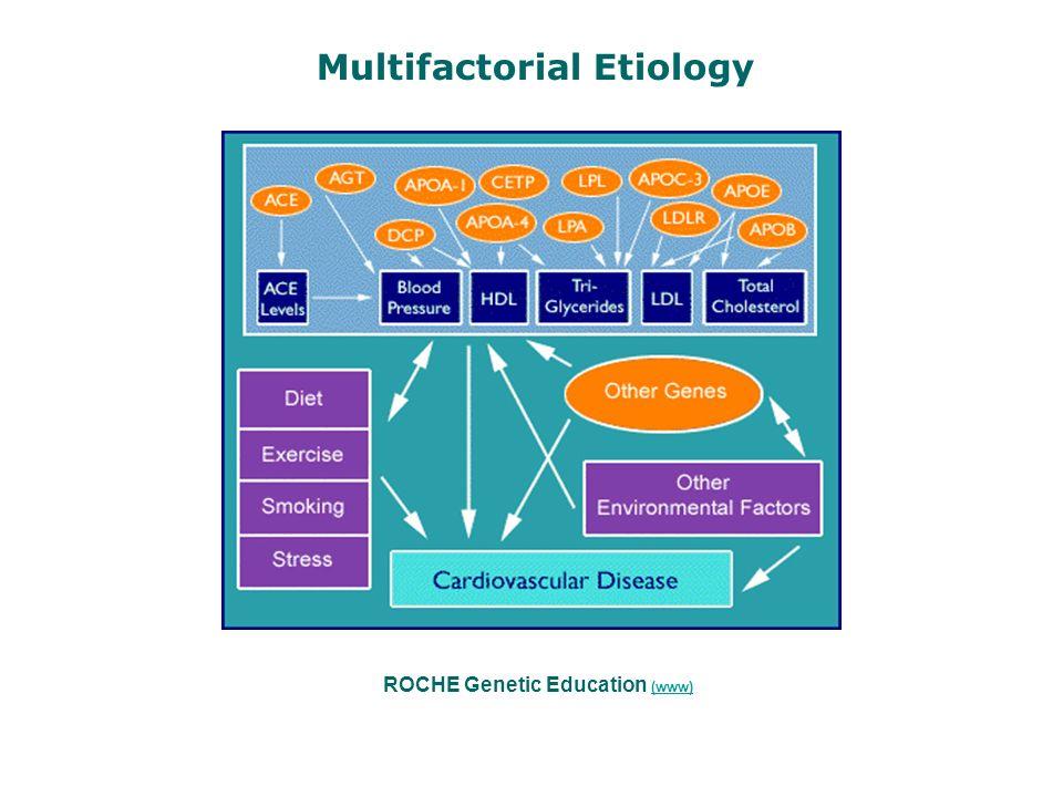 ROCHE Genetic Education (www) (www) Multifactorial Etiology