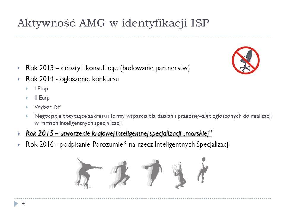 Aktywność AMG w identyfikacji ISP  Rok 2013 – debaty i konsultacje (budowanie partnerstw)  Rok 2014 - ogłoszenie konkursu  I Etap  II Etap  Wybór