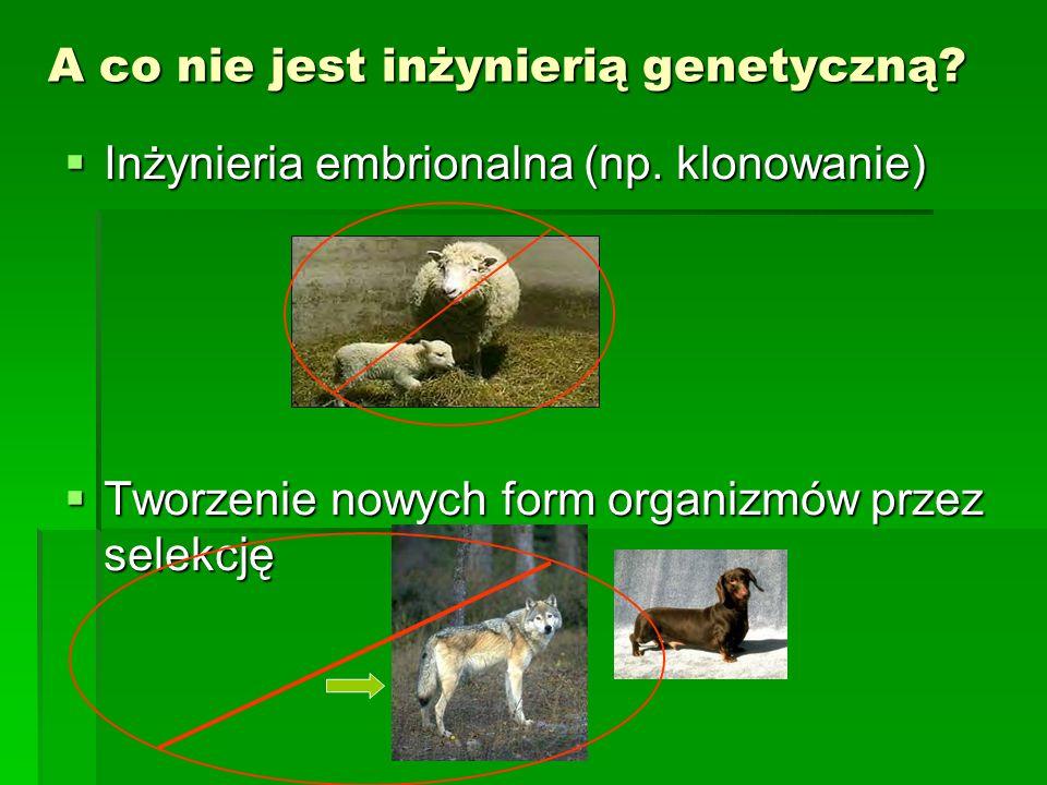 A co nie jest inżynierią genetyczną.  Inżynieria embrionalna (np.