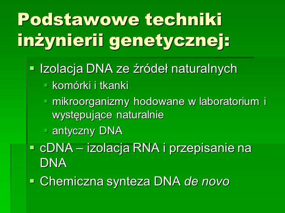 Podstawowe techniki inżynierii genetycznej:  Izolacja DNA ze źródeł naturalnych  komórki i tkanki  mikroorganizmy hodowane w laboratorium i występujące naturalnie  antyczny DNA  cDNA – izolacja RNA i przepisanie na DNA  Chemiczna synteza DNA de novo