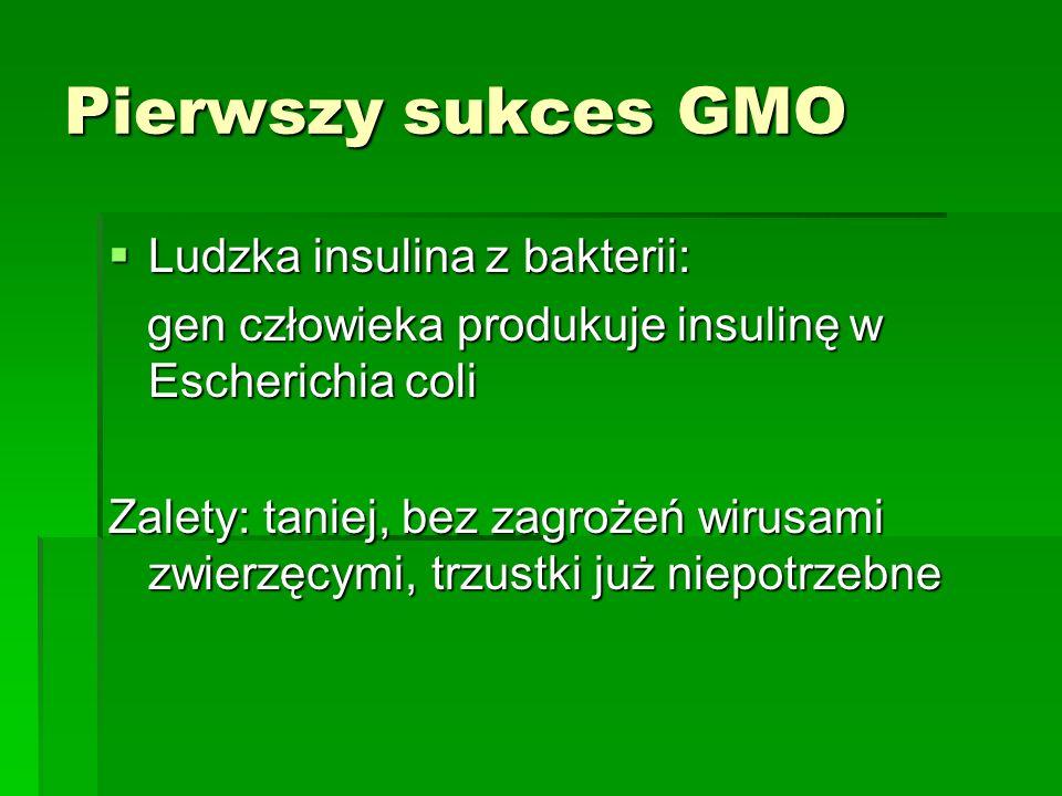 Pierwszy sukces GMO  Ludzka insulina z bakterii: gen człowieka produkuje insulinę w Escherichia coli gen człowieka produkuje insulinę w Escherichia coli Zalety: taniej, bez zagrożeń wirusami zwierzęcymi, trzustki już niepotrzebne
