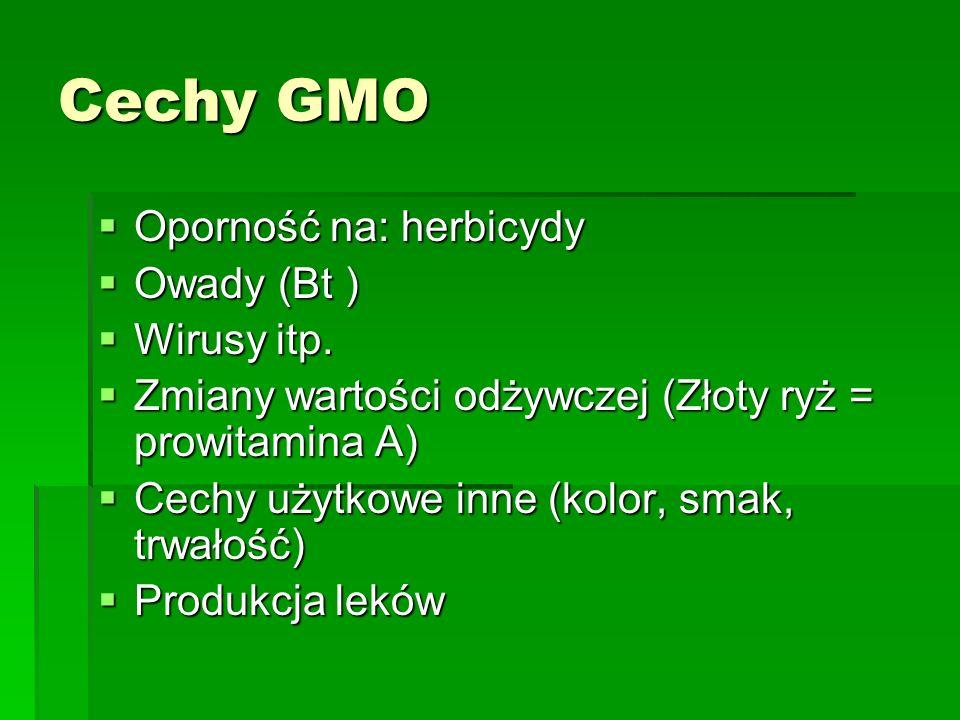 Cechy GMO  Oporność na: herbicydy  Owady (Bt )  Wirusy itp.