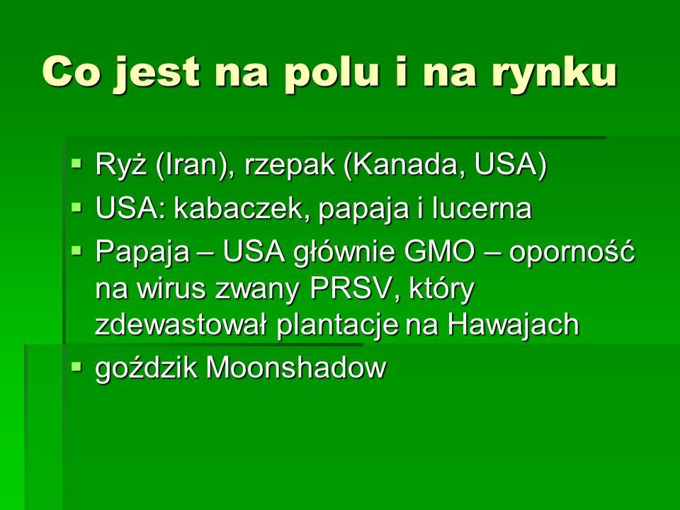 Co jest na polu i na rynku  Ryż (Iran), rzepak (Kanada, USA)  USA: kabaczek, papaja i lucerna  Papaja – USA głównie GMO – oporność na wirus zwany PRSV, który zdewastował plantacje na Hawajach  goździk Moonshadow