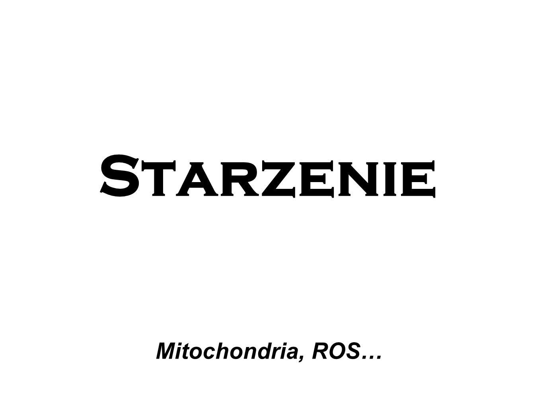 Starzenie Mitochondria, ROS…