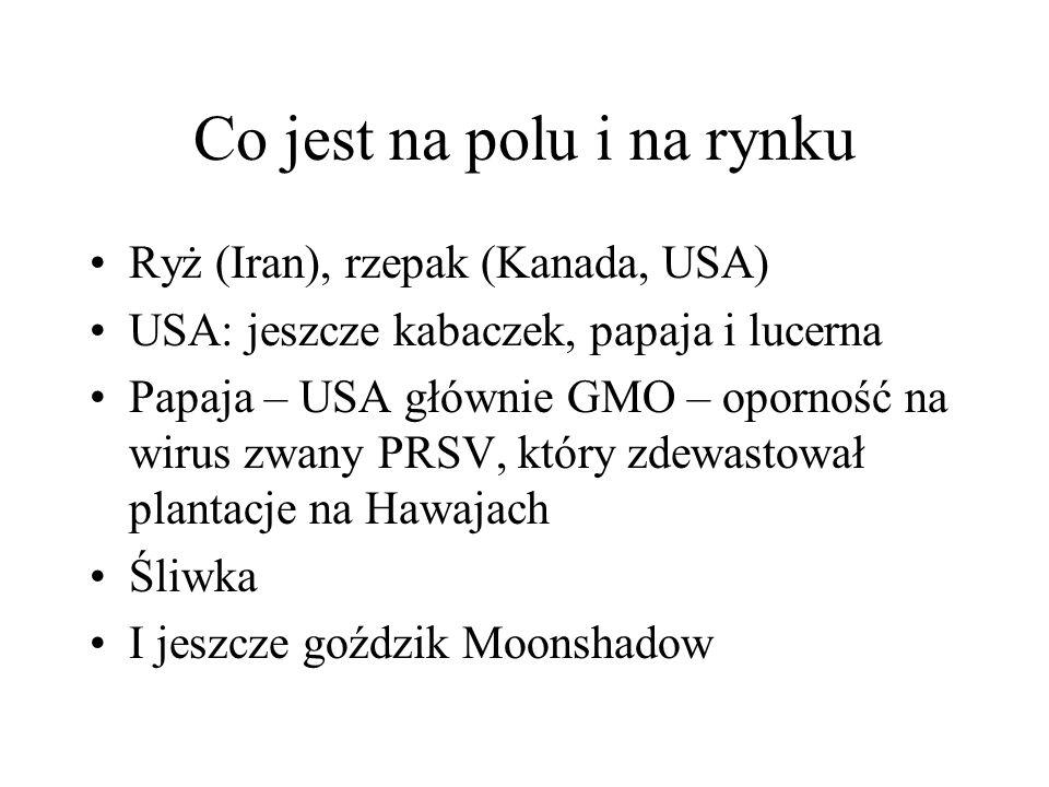 Co jest na polu i na rynku Ryż (Iran), rzepak (Kanada, USA) USA: jeszcze kabaczek, papaja i lucerna Papaja – USA głównie GMO – oporność na wirus zwany PRSV, który zdewastował plantacje na Hawajach Śliwka I jeszcze goździk Moonshadow