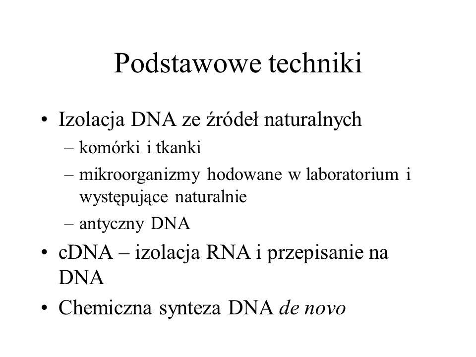 Podstawowe techniki Izolacja DNA ze źródeł naturalnych –komórki i tkanki –mikroorganizmy hodowane w laboratorium i występujące naturalnie –antyczny DNA cDNA – izolacja RNA i przepisanie na DNA Chemiczna synteza DNA de novo