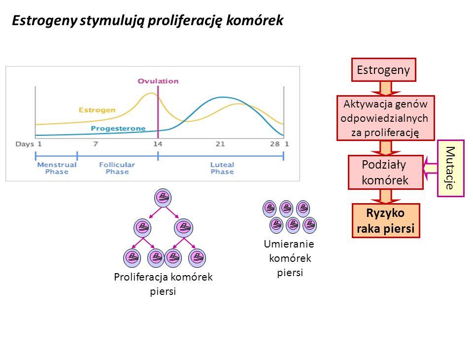 Estrogeny stymulują proliferację komórek Proliferacja komórek piersi Umieranie komórek piersi Ryzyko raka piersi Estrogeny Aktywacja genów odpowiedzia
