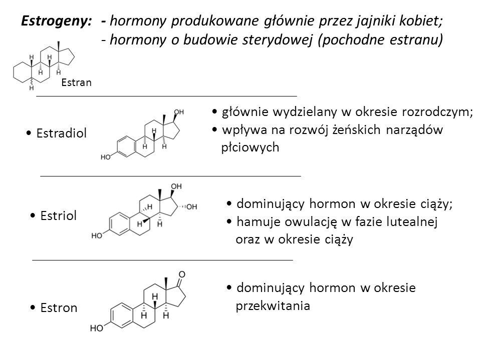 Estrogeny: Estriol Estron Estradiol Estran - hormony produkowane głównie przez jajniki kobiet; - hormony o budowie sterydowej (pochodne estranu) główn