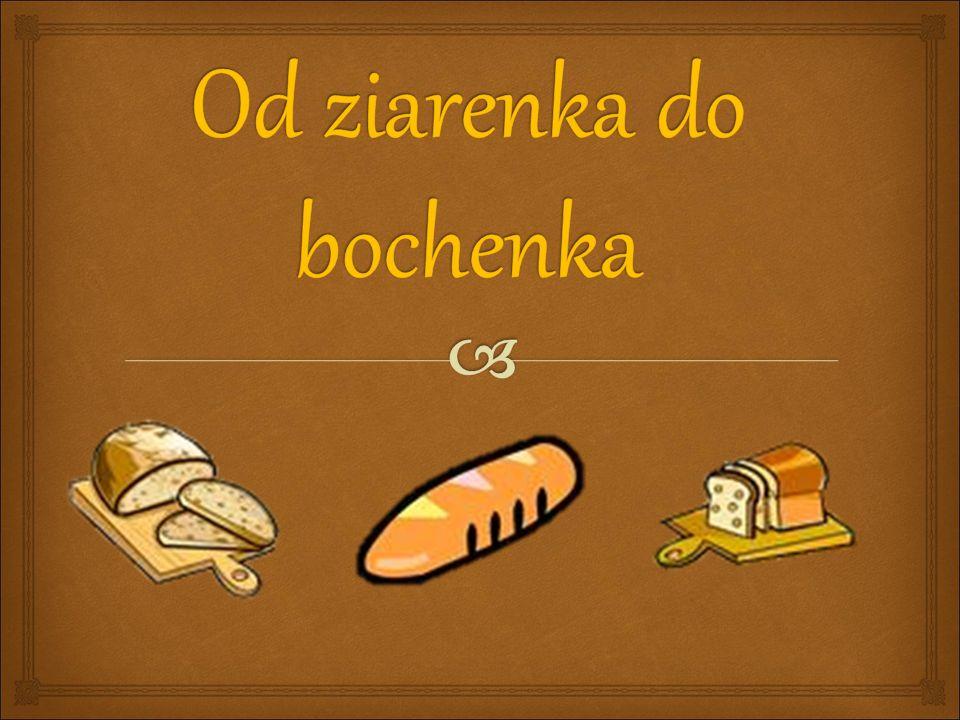  Dzień 4: Chleb  W skupieniu wysłuchuje treści przekazywanych przez przewodnika – pracownika piekarni.