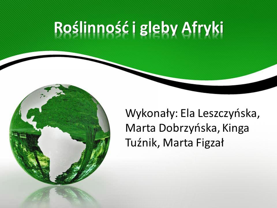 Wykonały: Ela Leszczyńska, Marta Dobrzyńska, Kinga Tuźnik, Marta Figzał