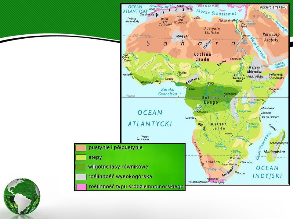 Spośród języków afrykańskich najbardziej rozpowszechnione są:  w Afryce Północnej - arabski (około 150 mln mówiących),  w Afryce Północno-Wschodniej - amharski (ponad 15 mln), oromo (ponad 10 mln) i somali (około 6,3 mln),  w Afryce Wschodniej - suahili (35-50 mln), rwanda (10 mln) i szona (około 7,6 mln),  w Afryce Zachodniej - hausa (25-40 mln), joruba (20 mln), ibo (16 mln), fulani (8 mln) i mandingo (6-7 mln),  w Afryce Środkowej - kongo (7,6 mln) i lingala (ponad 5 mln),  w Afryce Południowej - zulu (6,3 mln) i khosa (około 4 mln).