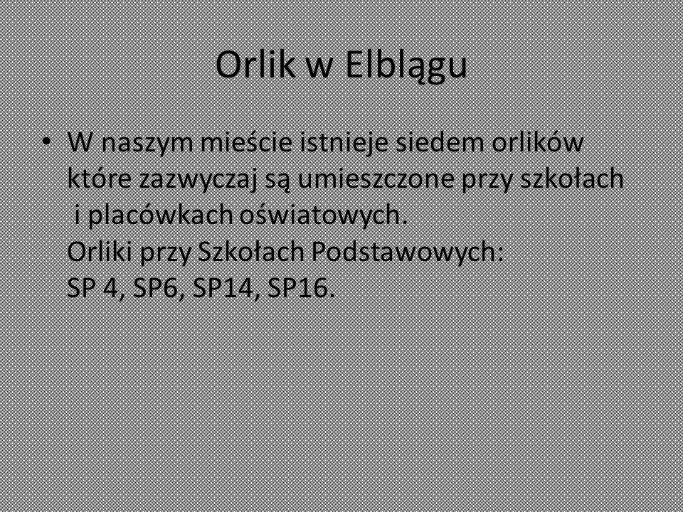 Orlik w Elblągu W naszym mieście istnieje siedem orlików które zazwyczaj są umieszczone przy szkołach i placówkach oświatowych.