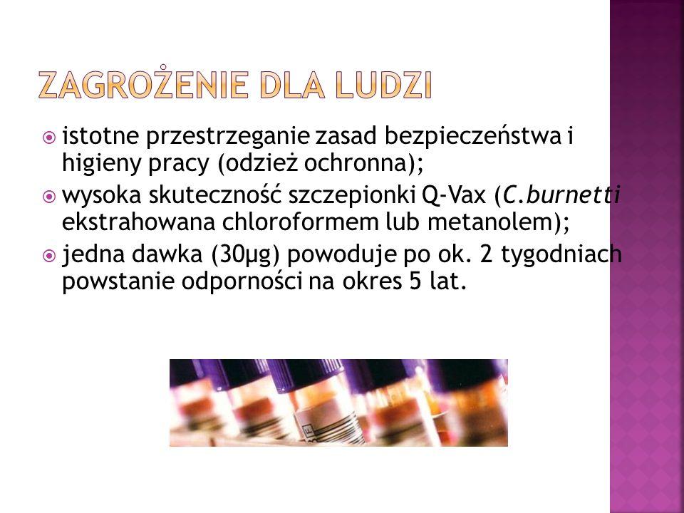  istotne przestrzeganie zasad bezpieczeństwa i higieny pracy (odzież ochronna);  wysoka skuteczność szczepionki Q-Vax (C.burnetti ekstrahowana chloroformem lub metanolem);  jedna dawka (30µg) powoduje po ok.