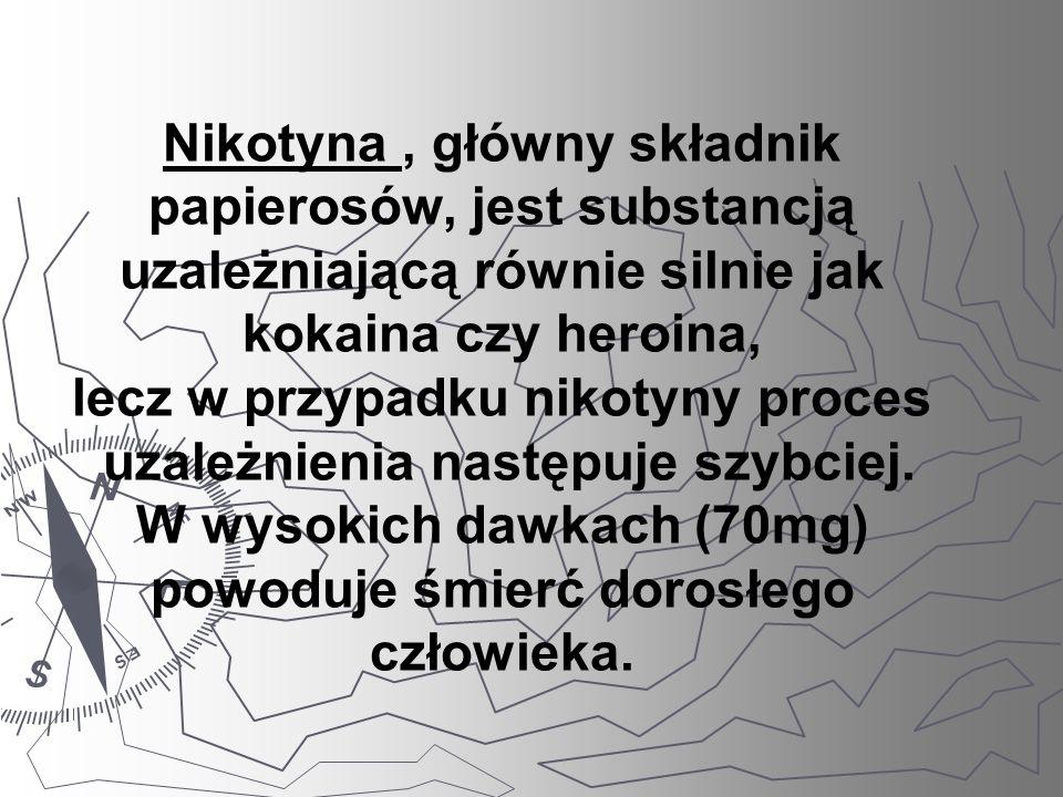 Nikotyna, główny składnik papierosów, jest substancją uzależniającą równie silnie jak kokaina czy heroina, lecz w przypadku nikotyny proces uzależnien