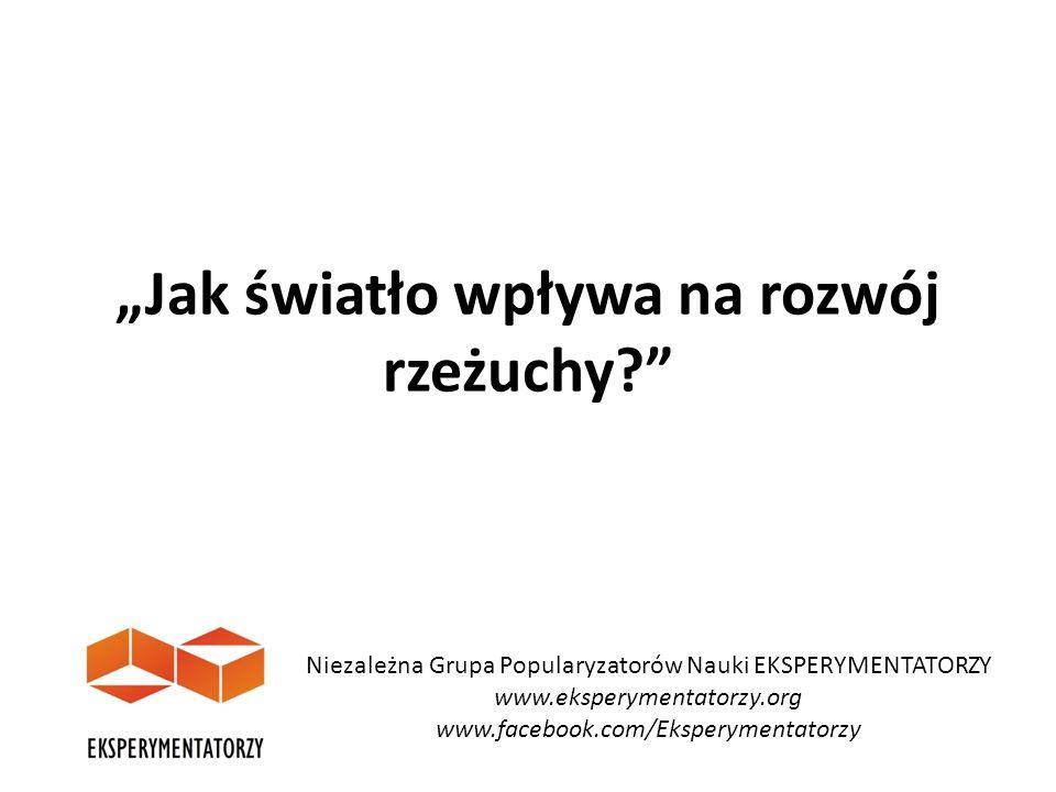 """""""Jak światło wpływa na rozwój rzeżuchy?"""" Niezależna Grupa Popularyzatorów Nauki EKSPERYMENTATORZY www.eksperymentatorzy.org www.facebook.com/Eksperyme"""