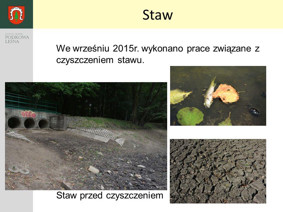 11 Staw We wrześniu 2015r. wykonano prace związane z czyszczeniem stawu. Staw przed czyszczeniem