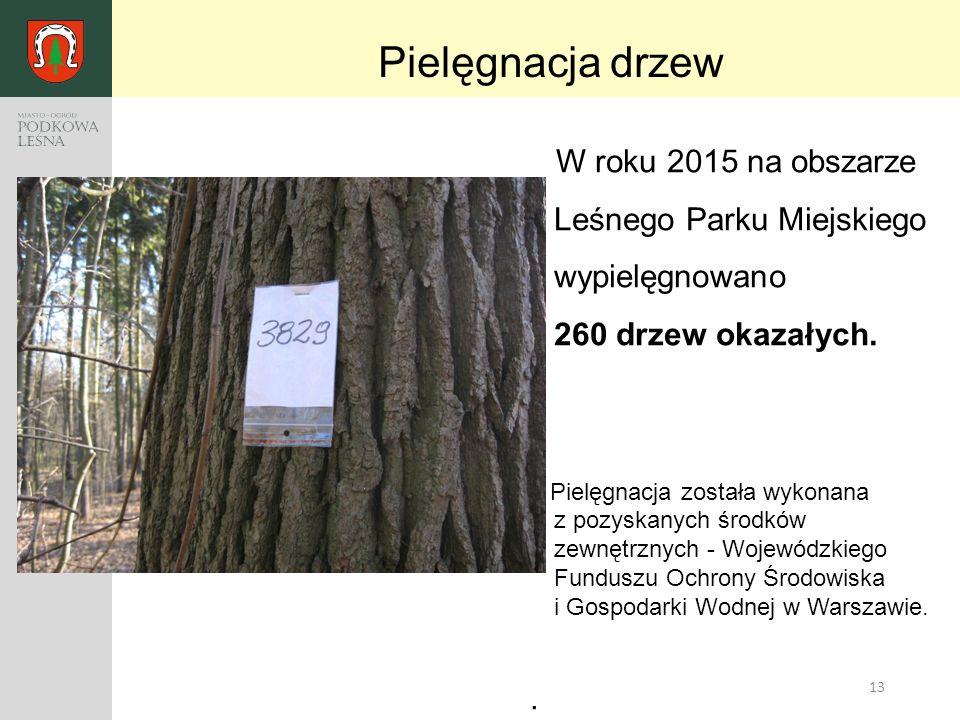 13 W roku 2015 na obszarze Leśnego Parku Miejskiego wypielęgnowano 260 drzew okazałych. Pielęgnacja została wykonana z pozyskanych środków zewnętrznyc