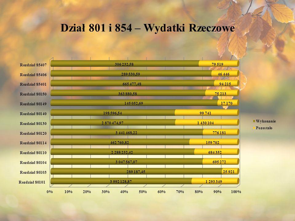Dział 801 i 854 – Wydatki Rzeczowe