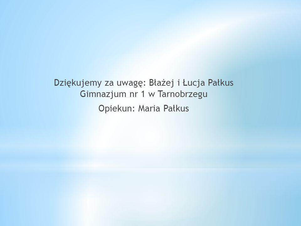 * Źródła: * 1.Archiwum prywatne mgr Marii Pałkus * 2. http://photo.bikestats.eu/zdjecie,207567,tarnobrzegmiechocin-kosciol-gotycki-pw-swietej-magdalen