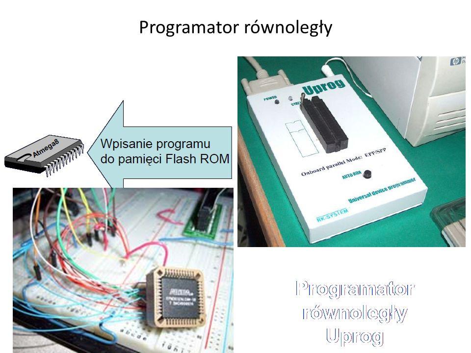 Programator równoległy