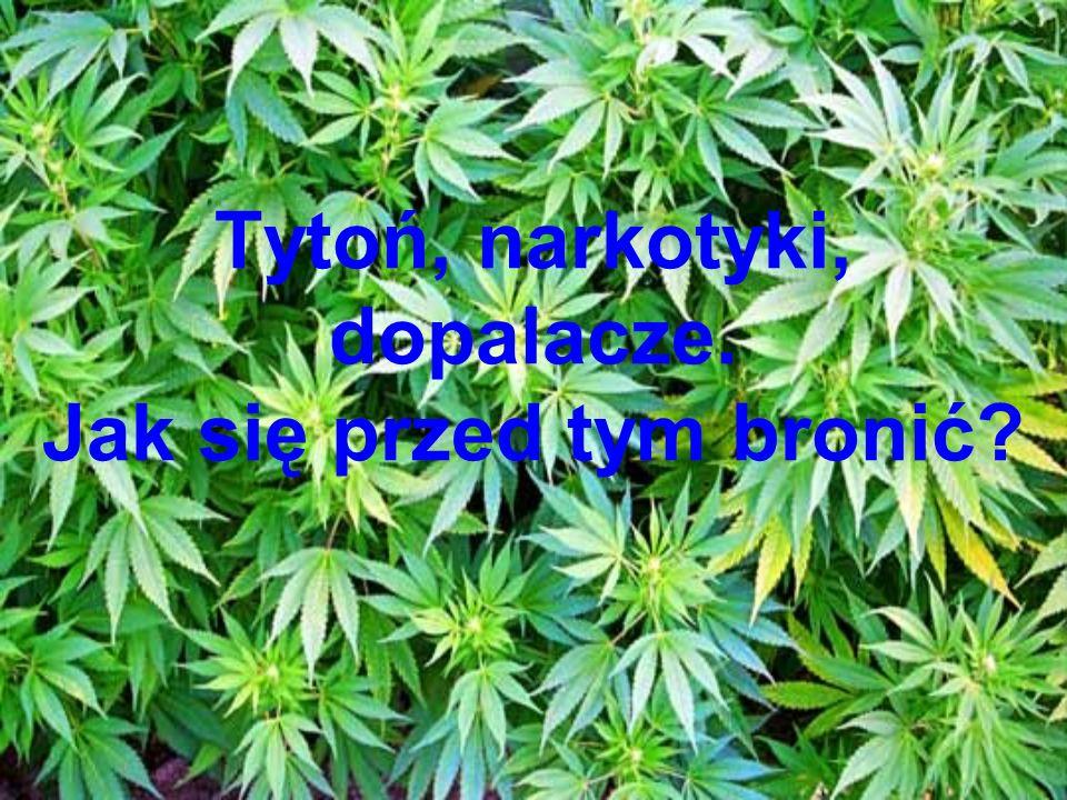 Tytoń, narkotyki, dopalacze. Jak się przed tym bronić