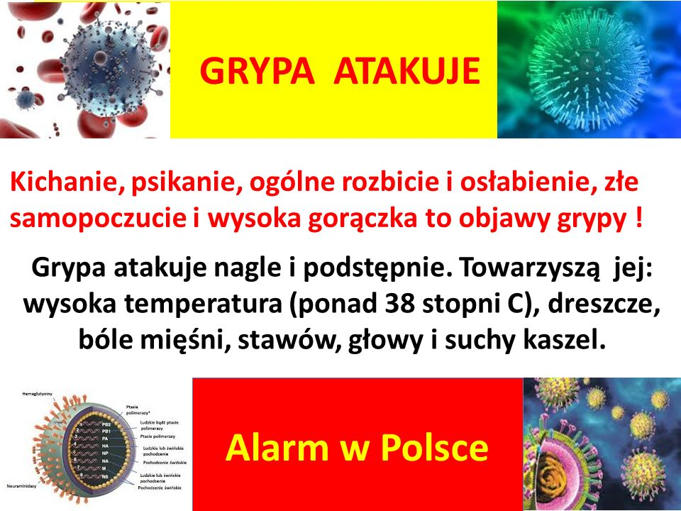 GRYPA ATAKUJE Alarm w Polsce Kichanie, psikanie, ogólne rozbicie i osłabienie, złe samopoczucie i wysoka gorączka to objawy grypy ! Grypa atakuje nagl