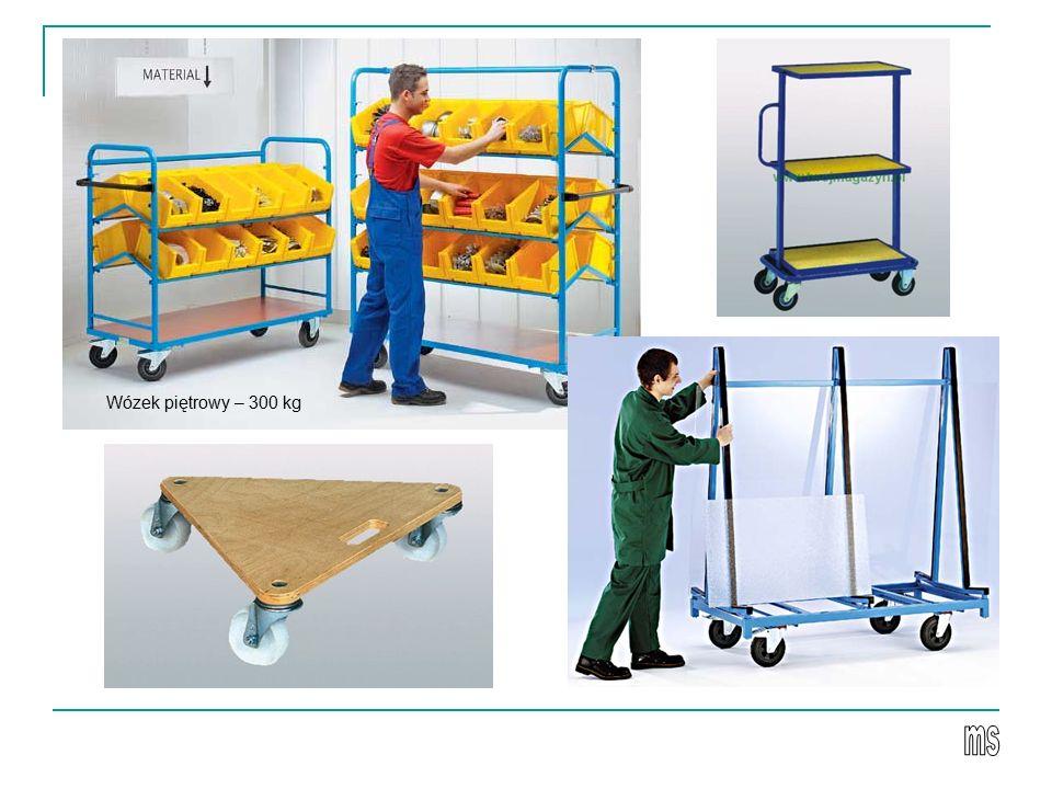 Wózek piętrowy – 300 kg
