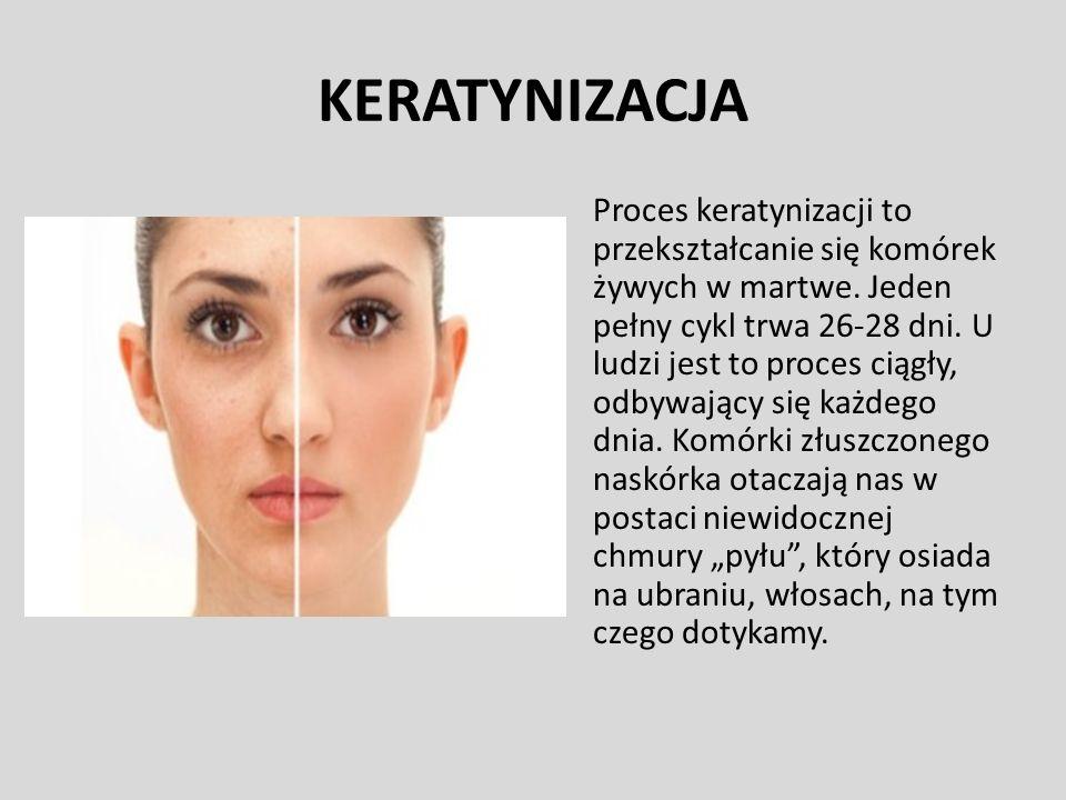 KERATYNIZACJA Proces keratynizacji to przekształcanie się komórek żywych w martwe. Jeden pełny cykl trwa 26-28 dni. U ludzi jest to proces ciągły, odb