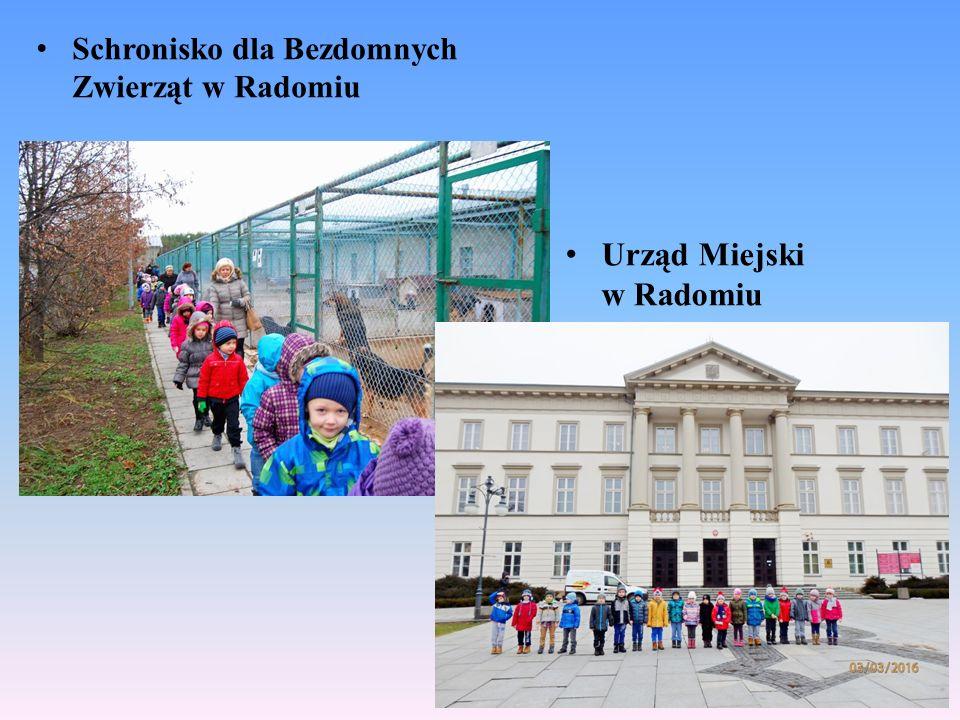 Schronisko dla Bezdomnych Zwierząt w Radomiu Urząd Miejski w Radomiu