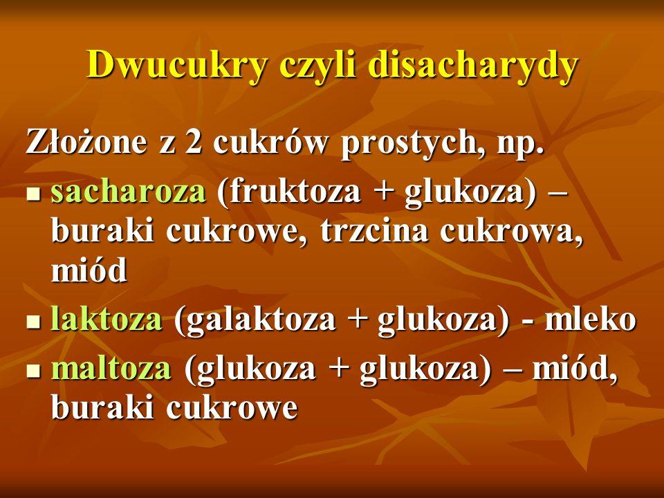 Dwucukry czyli disacharydy Złożone z 2 cukrów prostych, np. sacharoza (fruktoza + glukoza) – buraki cukrowe, trzcina cukrowa, miód sacharoza (fruktoza