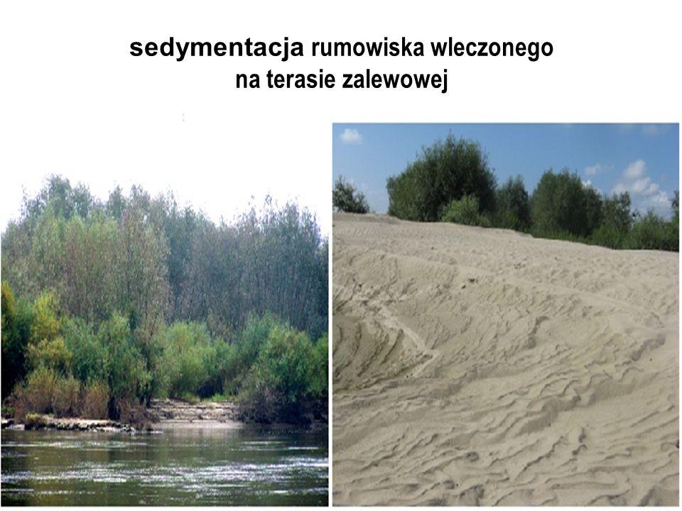 sedymentacja rumowiska wleczonego na terasie zalewowej