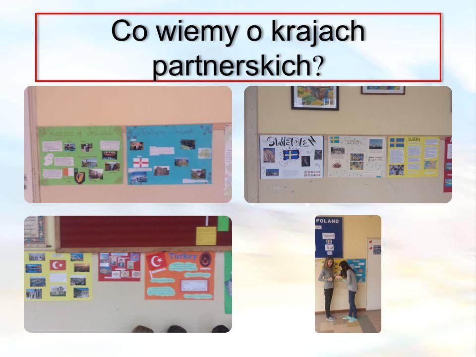 Co wiemy o krajach partnerskich