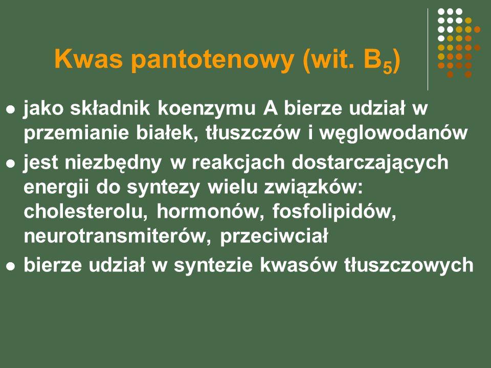 Kwas pantotenowy (wit. B 5 ) jako składnik koenzymu A bierze udział w przemianie białek, tłuszczów i węglowodanów jest niezbędny w reakcjach dostarcza