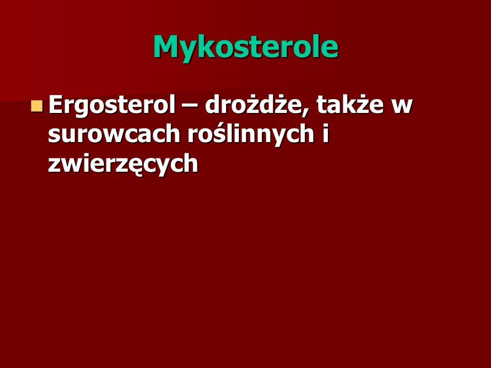 Mykosterole Ergosterol – drożdże, także w surowcach roślinnych i zwierzęcych Ergosterol – drożdże, także w surowcach roślinnych i zwierzęcych