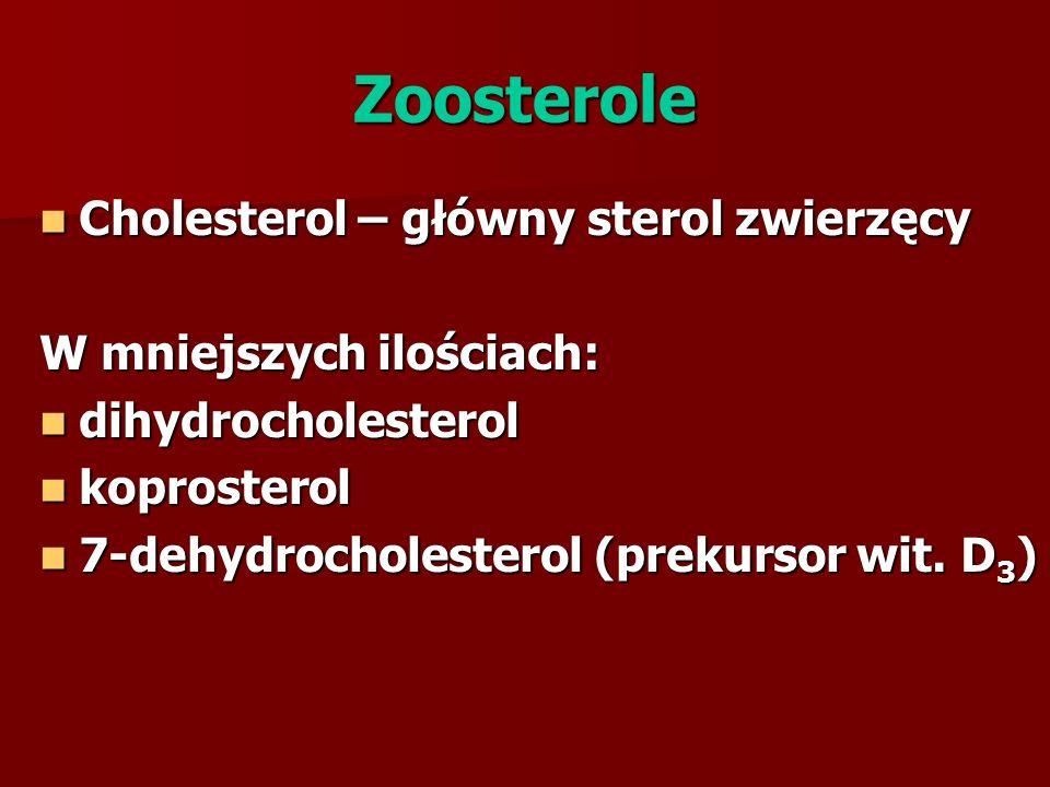 Zoosterole Cholesterol – główny sterol zwierzęcy Cholesterol – główny sterol zwierzęcy W mniejszych ilościach: dihydrocholesterol dihydrocholesterol koprosterol koprosterol 7-dehydrocholesterol (prekursor wit.
