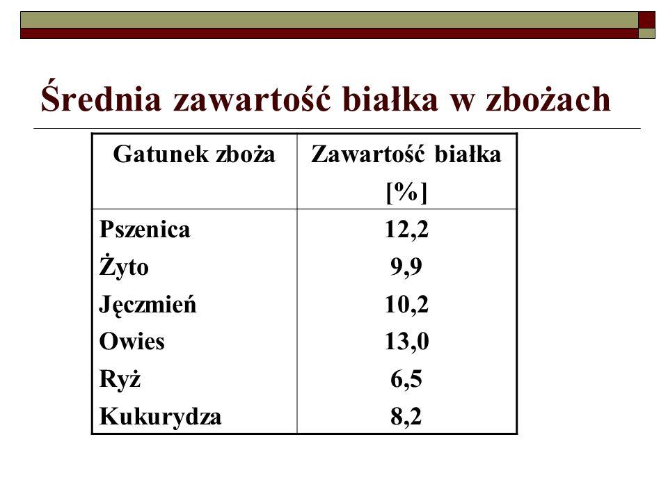 Średnia zawartość białka w zbożach Gatunek zbożaZawartość białka [%] Pszenica Żyto Jęczmień Owies Ryż Kukurydza 12,2 9,9 10,2 13,0 6,5 8,2