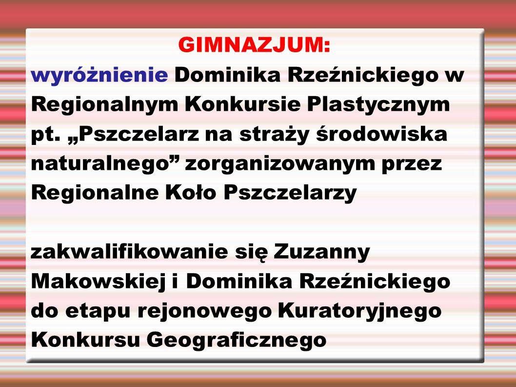 """GIMNAZJUM: wyróżnienie Dominika Rzeźnickiego w Regionalnym Konkursie Plastycznym pt. """"Pszczelarz na straży środowiska naturalnego"""" zorganizowanym prze"""
