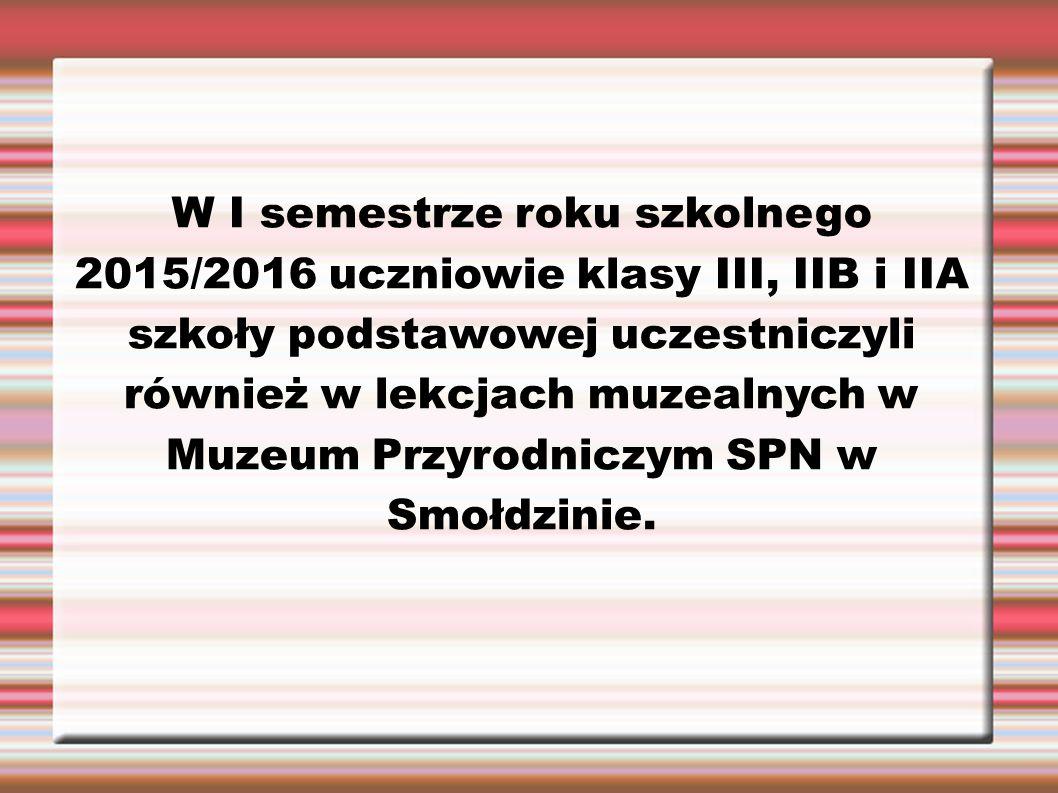 W I semestrze roku szkolnego 2015/2016 uczniowie klasy III, IIB i IIA szkoły podstawowej uczestniczyli również w lekcjach muzealnych w Muzeum Przyrodniczym SPN w Smołdzinie.
