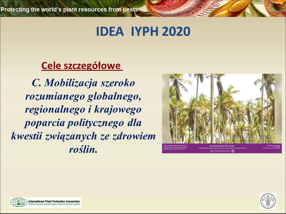 IDEA IYPH 2020 Cele szczegółowe C. Mobilizacja szeroko rozumianego globalnego, regionalnego i krajowego poparcia politycznego dla kwestii związanych z