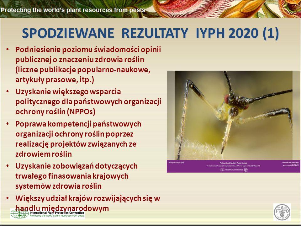 SPODZIEWANE REZULTATY IYPH 2020 (1) Podniesienie poziomu świadomości opinii publicznej o znaczeniu zdrowia roślin (liczne publikacje popularno-naukowe, artykuły prasowe, itp.) Uzyskanie większego wsparcia politycznego dla państwowych organizacji ochrony roślin (NPPOs) Poprawa kompetencji państwowych organizacji ochrony roślin poprzez realizację projektów związanych ze zdrowiem roślin Uzyskanie zobowiązań dotyczących trwałego finasowania krajowych systemów zdrowia roślin Większy udział krajów rozwijających się w handlu międzynarodowym