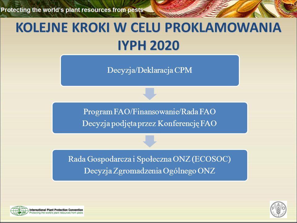 KOLEJNE KROKI W CELU PROKLAMOWANIA IYPH 2020 Decyzja/Deklaracja CPM Program FAO/Finansowanie/Rada FAO Decyzja podjęta przez Konferencję FAO Rada Gospo