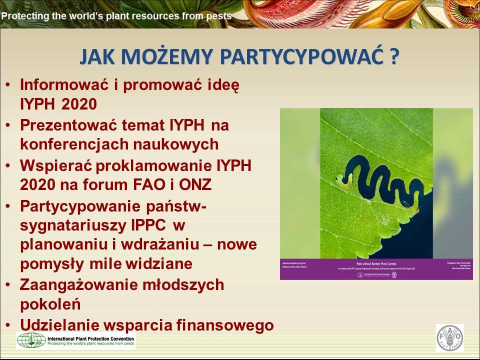 JAK MOŻEMY PARTYCYPOWAĆ ? Informować i promować ideę IYPH 2020 Prezentować temat IYPH na konferencjach naukowych Wspierać proklamowanie IYPH 2020 na f