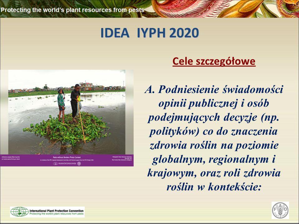 IDEA IYPH 2020 Cele szczegółowe A. Podniesienie świadomości opinii publicznej i osób podejmujących decyzje (np. polityków) co do znaczenia zdrowia roś