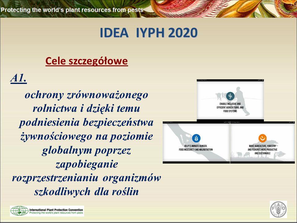 IDEA IYPH 2020 Cele szczegółowe A1. ochrony zrównoważonego rolnictwa i dzięki temu podniesienia bezpieczeństwa żywnościowego na poziomie globalnym pop