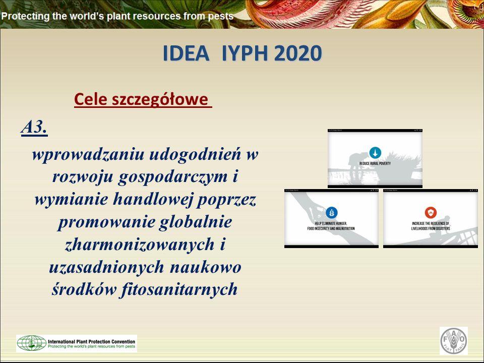 IDEA IYPH 2020 Cele szczegółowe A3. wprowadzaniu udogodnień w rozwoju gospodarczym i wymianie handlowej poprzez promowanie globalnie zharmonizowanych