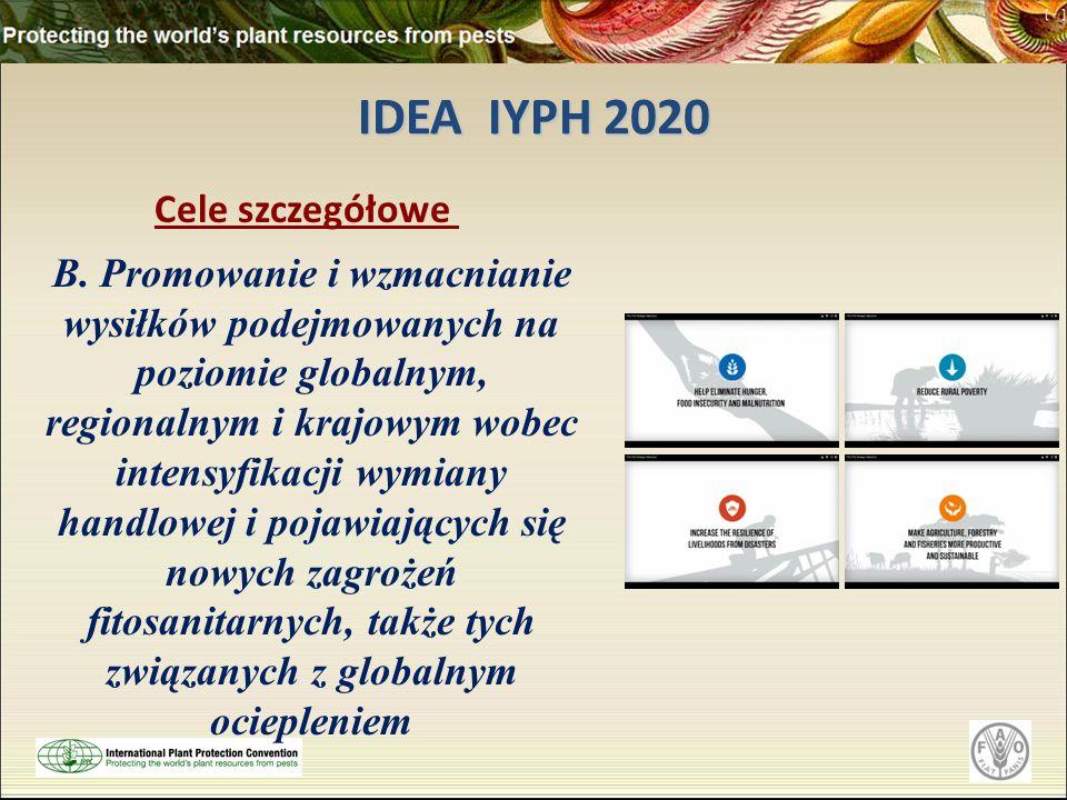 IDEA IYPH 2020 Cele szczegółowe B. Promowanie i wzmacnianie wysiłków podejmowanych na poziomie globalnym, regionalnym i krajowym wobec intensyfikacji