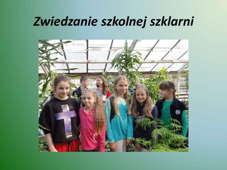 Zwiedzanie szkolnej szklarni
