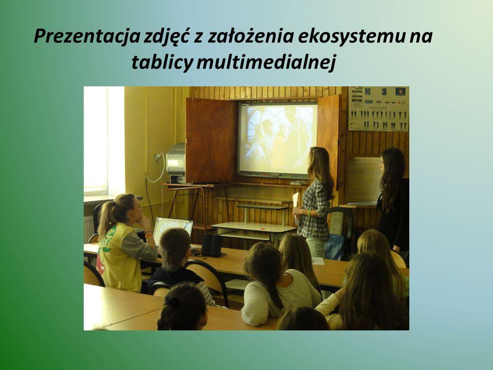 Prezentacja zdjęć z założenia ekosystemu na tablicy multimedialnej
