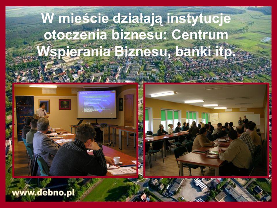 W mieście działają instytucje otoczenia biznesu: Centrum Wspierania Biznesu, banki itp.