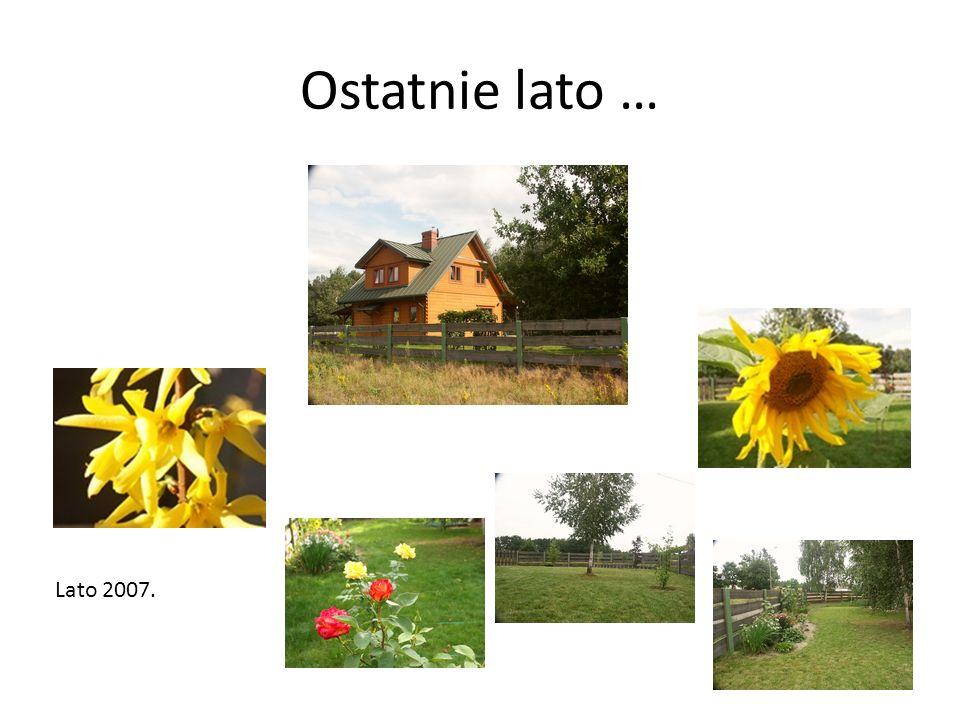 Ostatnie lato … Lato 2007.